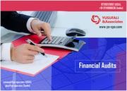 Enterprise Risk Management Services, Financial Audit – YA-CPA Team.